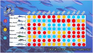 punta cana fishing calendar