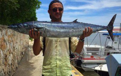 Dominican republic fish